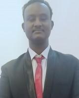 Ahmed adel Mohammed mahmoud